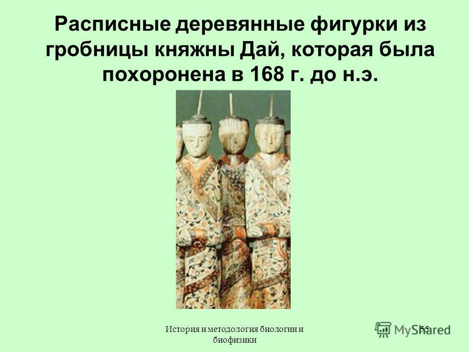 Расписные деревянные фигурки из гробницы княжны Дай, которая была похоронена в 168 г. до н.э. 55История и методология биологии и биофизики