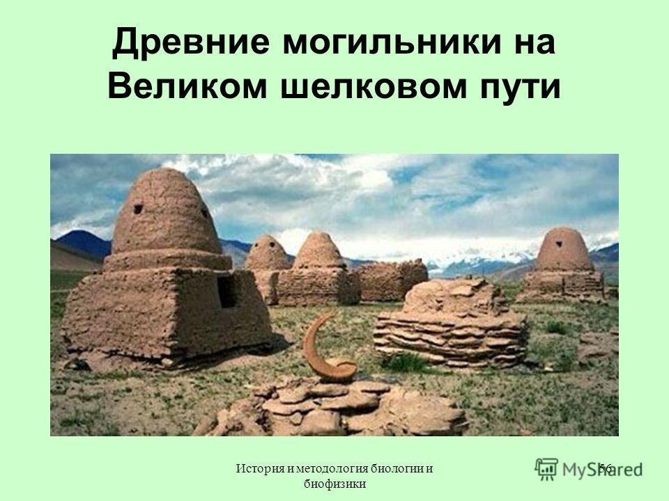 Древние могильники на Великом шелковом пути 56История и методология биологии и биофизики