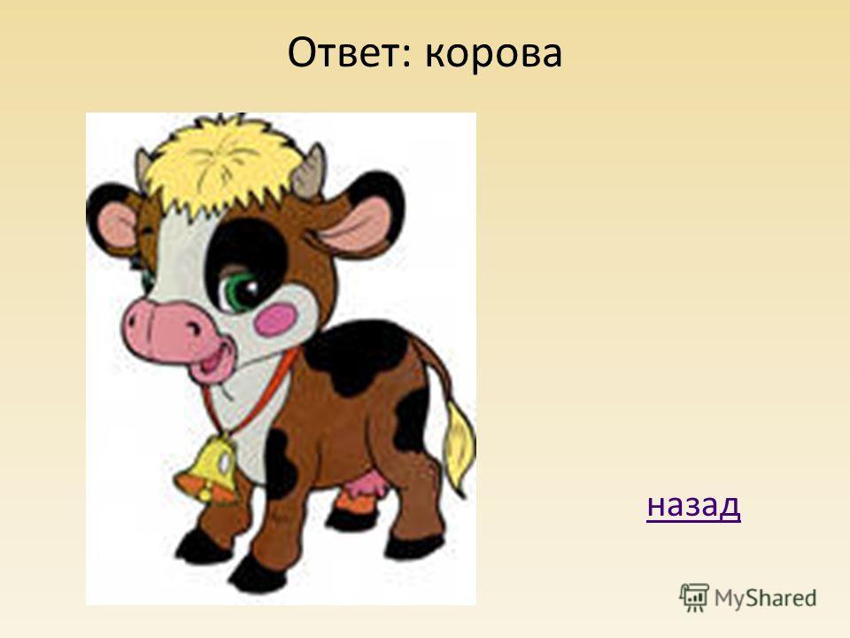 Ответ: корова назад