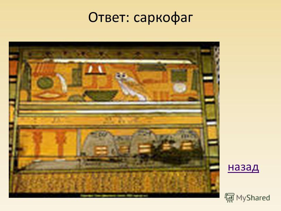 Ответ: саркофаг назад