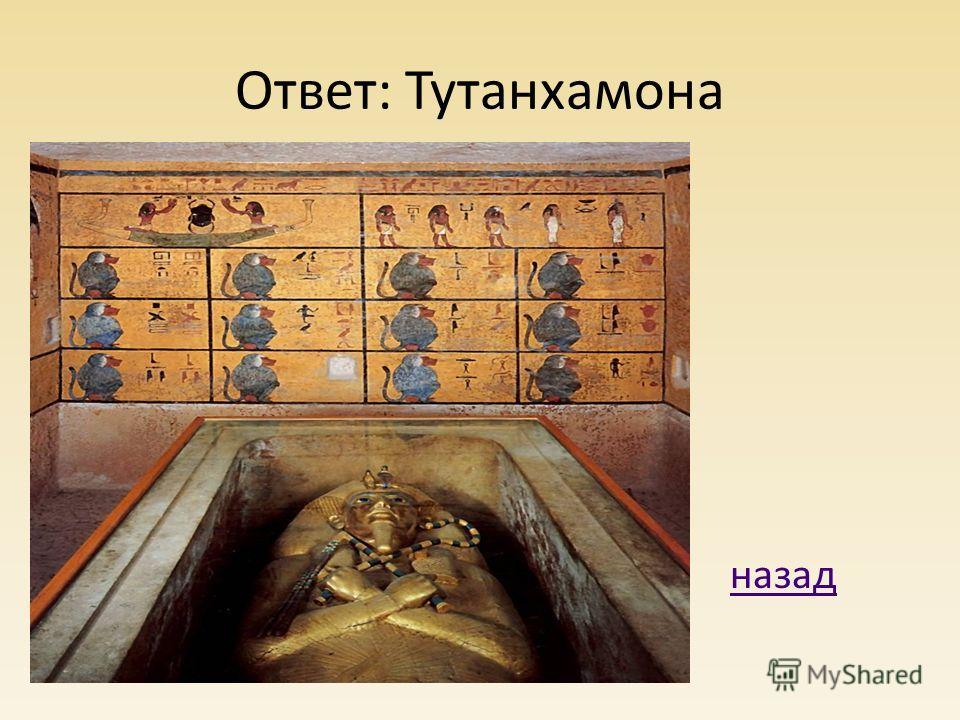 Ответ: Тутанхамона назад