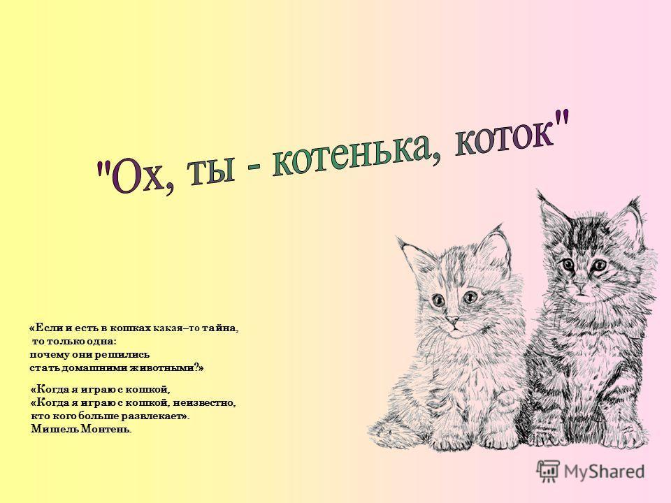 «Если и есть в кошках какая–то тайна, то только одна : почему они решились стать домашними животными?» «Когда я играю с кошкой, «Когда я играю с кошкой, неизвестно, кто кого больше развлекает». Мишель Монтень.