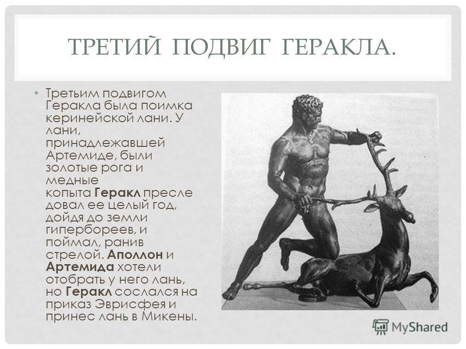 ТРЕТИЙ ПОДВИГ ГЕРАКЛА. Третьим подвигом Геракла была поимка керинейской лани. У лани, принадлежавшей Артемиде, были золотые рога и медные копыта Геракл пресле довал ее целый год, дойдя до земли гипербореев, и поймал, ранив стрелой. Аполлон и Артемида