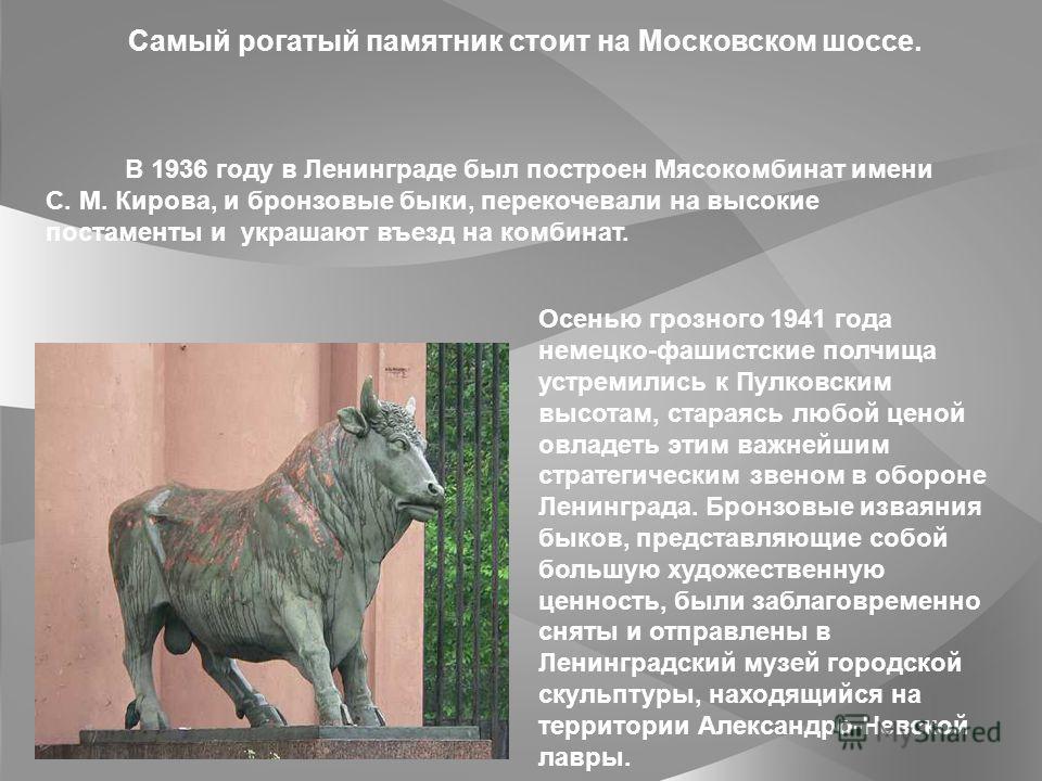 Осенью грозного 1941 года немецко-фашистские полчища устремились к Пулковским высотам, стараясь любой ценой овладеть этим важнейшим стратегическим звеном в обороне Ленинграда. Бронзовые изваяния быков, представляющие собой большую художественную ценн