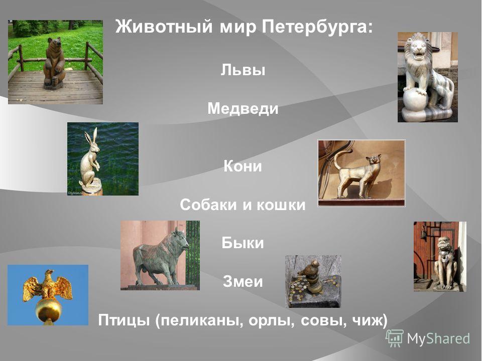 Животный мир Петербурга: Львы Медведи Кони Собаки и кошки Быки Змеи Птицы (пеликаны, орлы, совы, чиж)