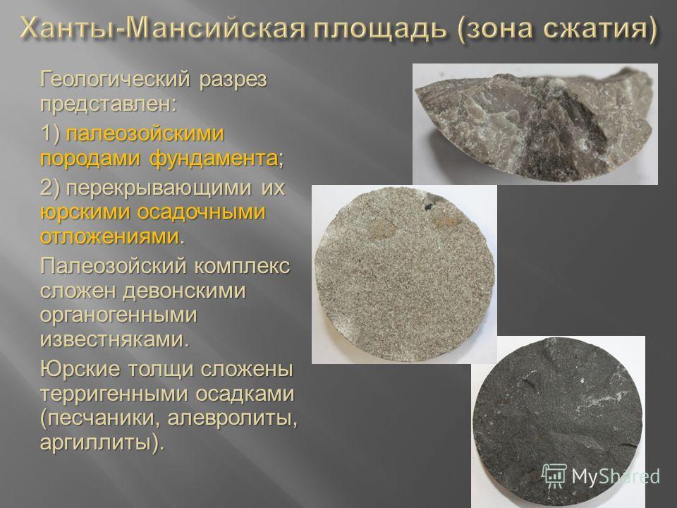 Геологический разрез представлен: 1) палеозойскими породами фундамента; 2) перекрывающими их юрскими осадочными отложениями. Палеозойский комплекс сложен девонскими органогенными известняками. Юрские толщи сложены терригенными осадками (песчаники, ал