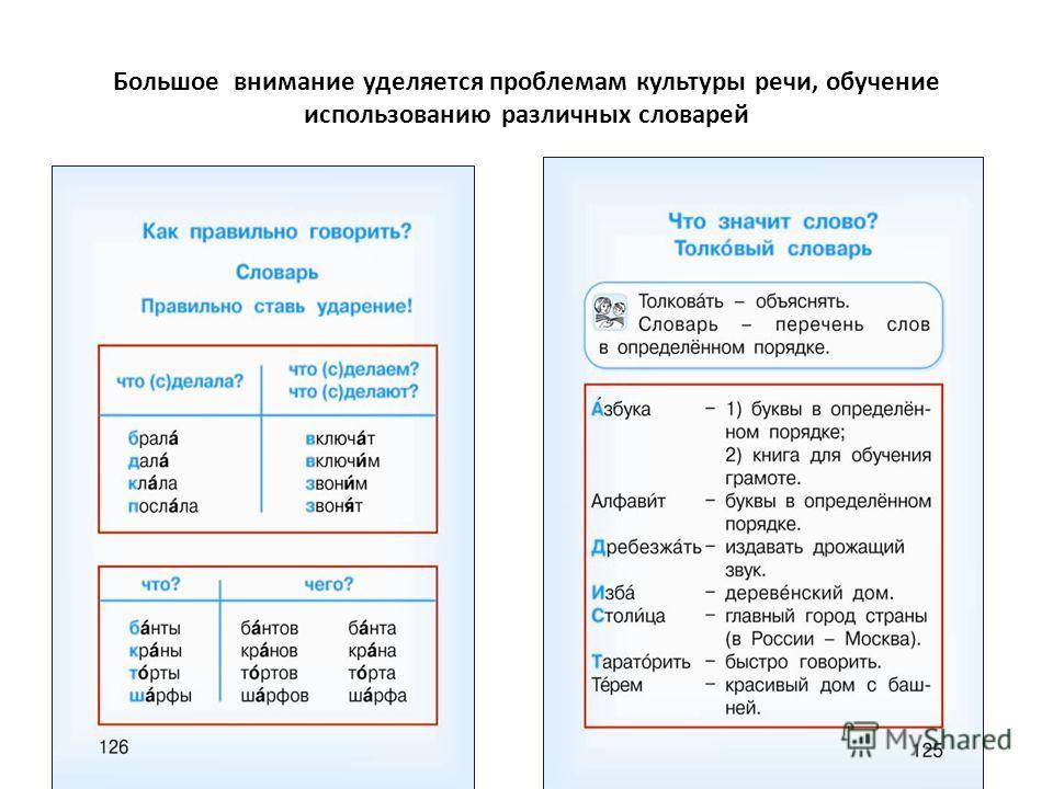 Большое внимание уделяется проблемам культуры речи, обучение использованию различных словарей