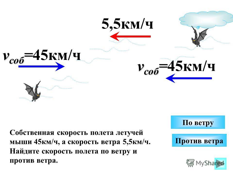v соб = v соб =45км/ч Против ветра Собственная скорость полета летучей мыши 45км/ч, а скорость ветра 5,5км/ч. Найдите скорость полета по ветру и против ветра. По ветру 5,5км/ч