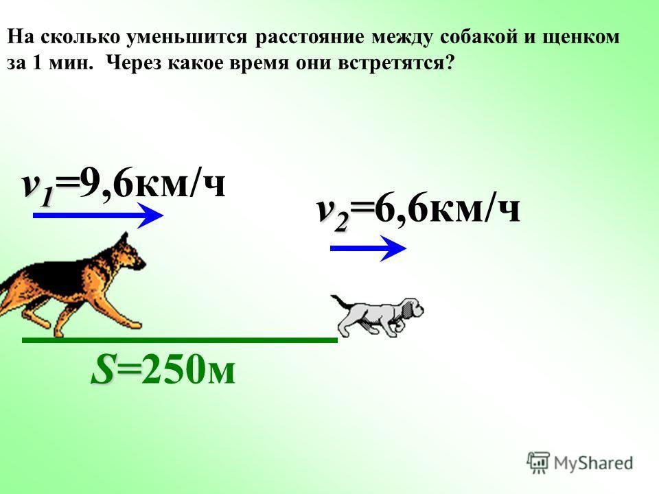 На сколько уменьшится расстояние между собакой и щенком за 1 мин. Через какое время они встретятся? v 1 = v 1 =9,6км/ч v 2 = v 2 =6,6км/ч S= S=250м