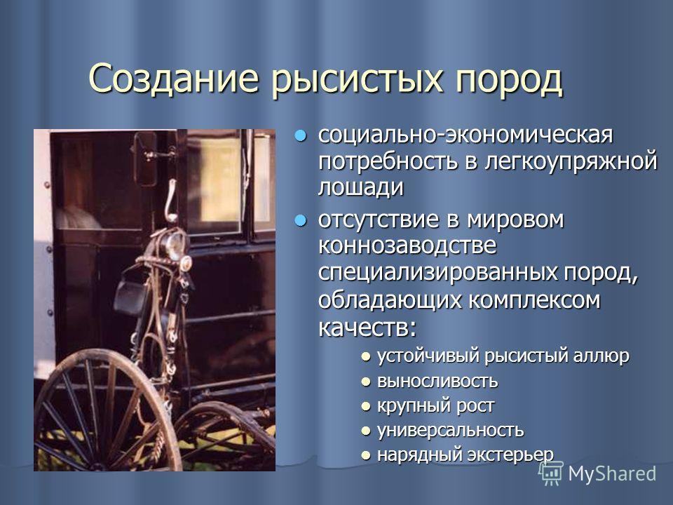 Создание рысистых пород социально-экономическая потребность в легкоупряжной лошади социально-экономическая потребность в легкоупряжной лошади отсутствие в мировом коннозаводстве специализированных пород, обладающих комплексом качеств: отсутствие в ми