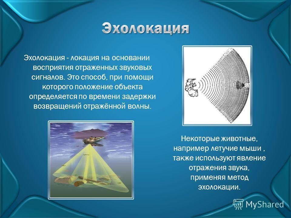 Эхолокация - локация на основании восприятия отраженных звуковых сигналов. Это способ, при помощи которого положение объекта определяется по времени задержки возвращений отражённой волны. Некоторые животные, например летучие мыши, также используют яв