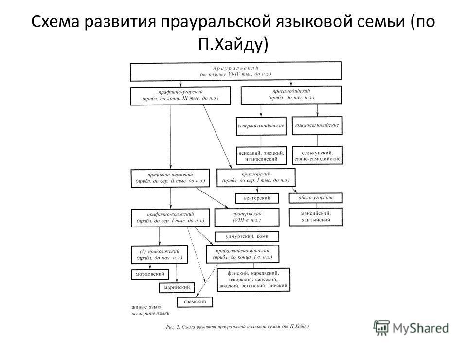Схема развития прауральской языковой семьи (по П.Хайду)
