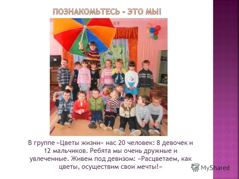 В группе «Цветы жизни» нас 20 человек: 8 девочек и 12 мальчиков. Ребята мы очень дружные и увлеченные. Живем под девизом: «Расцветаем, как цветы, осуществим свои мечты!»