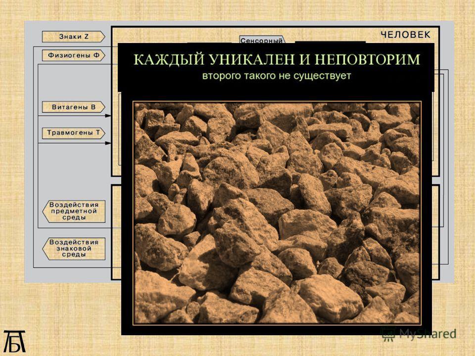 Система Человек Мир (по В.Д.Паронджанову)
