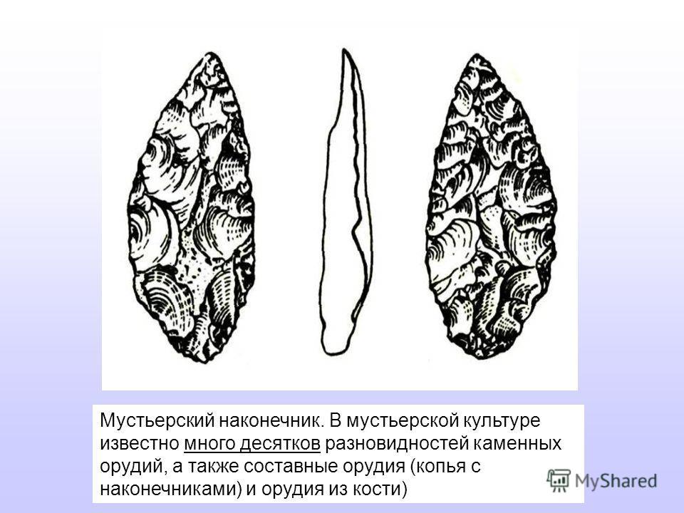 Мустьерский наконечник. В мустьерской культуре известно много десятков разновидностей каменных орудий, а также составные орудия (копья с наконечниками) и орудия из кости)