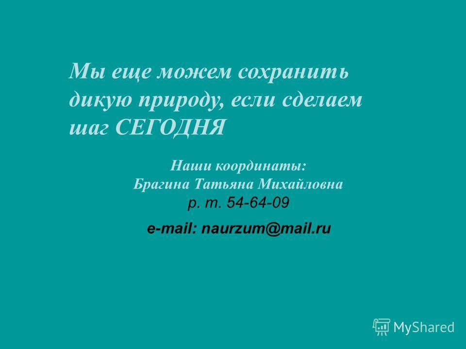 Мы еще можем сохранить дикую природу, если сделаем шаг СЕГОДНЯ Наши координаты: Брагина Татьяна Михайловна р. т. 54-64-09 e-mail: naurzum@mail.ru