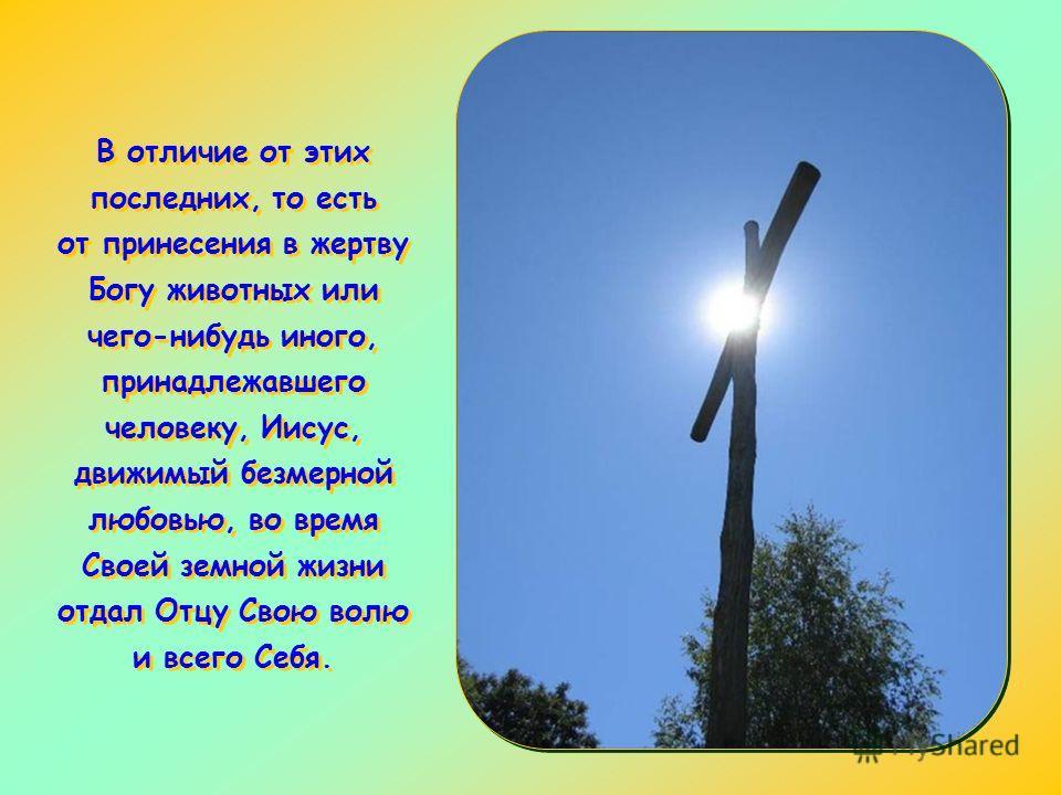Эти слова составляют часть контекста, в котором автор Послания хочет показать бесконечное превосходство жертвы Иисуса Христа над жертвами Ветхого Завета.