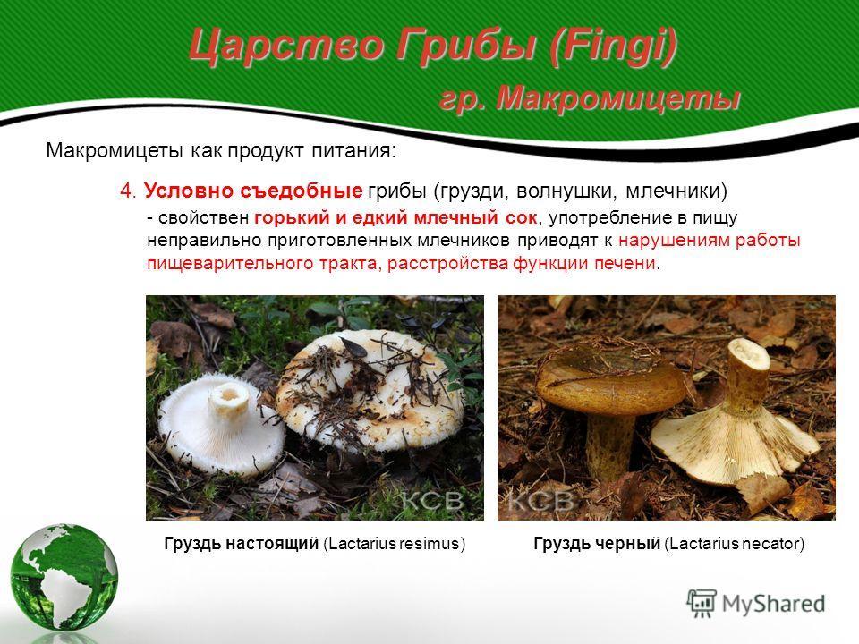 Царство Грибы (Fingi) гр. Макромицеты Макромицеты как продукт питания: 3. Несъедобные грибы, имеют неустранимый горький вкус, жёсткую невкусную мякоть, неприятный запах. Желчный гриб, ложный белый гриб (Tylopilus felleus) Перечный гриб (Chalciporus p