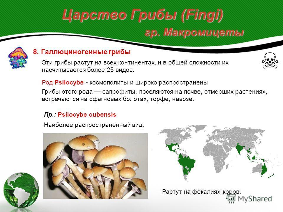 Царство Грибы (Fingi) гр. Макромицеты Макромицеты как продукт питания: Профилактика отравлений макромицетами: - не собирать неизвестные или сомнительные грибы; - не собирать старые перезрелые или червивые грибы, т.к. аккумулируют автолитические токси