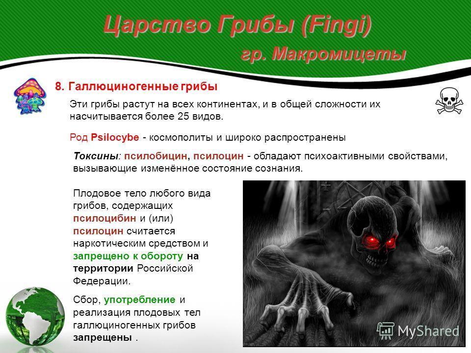 Царство Грибы (Fingi) гр. Макромицеты 8. Галлюциногенные грибы Эти грибы растут на всех континентах, и в общей сложности их насчитывается более 25 видов. Род Psilocybe - космополиты и широко распространены Токсины: псилобицин, псилоцин - обладают пси