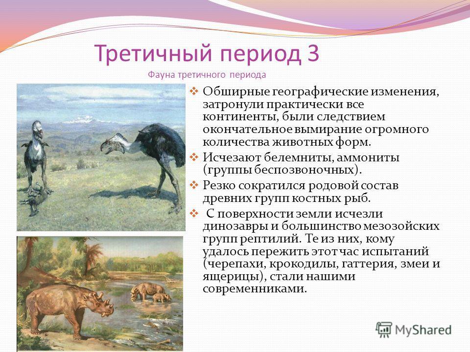 Третичный период 3 Фауна третичного периода Обширные географические изменения, затронули практически все континенты, были следствием окончательное вымирание огромного количества животных форм. Исчезают белемниты, аммониты (группы беспозвоночных). Рез