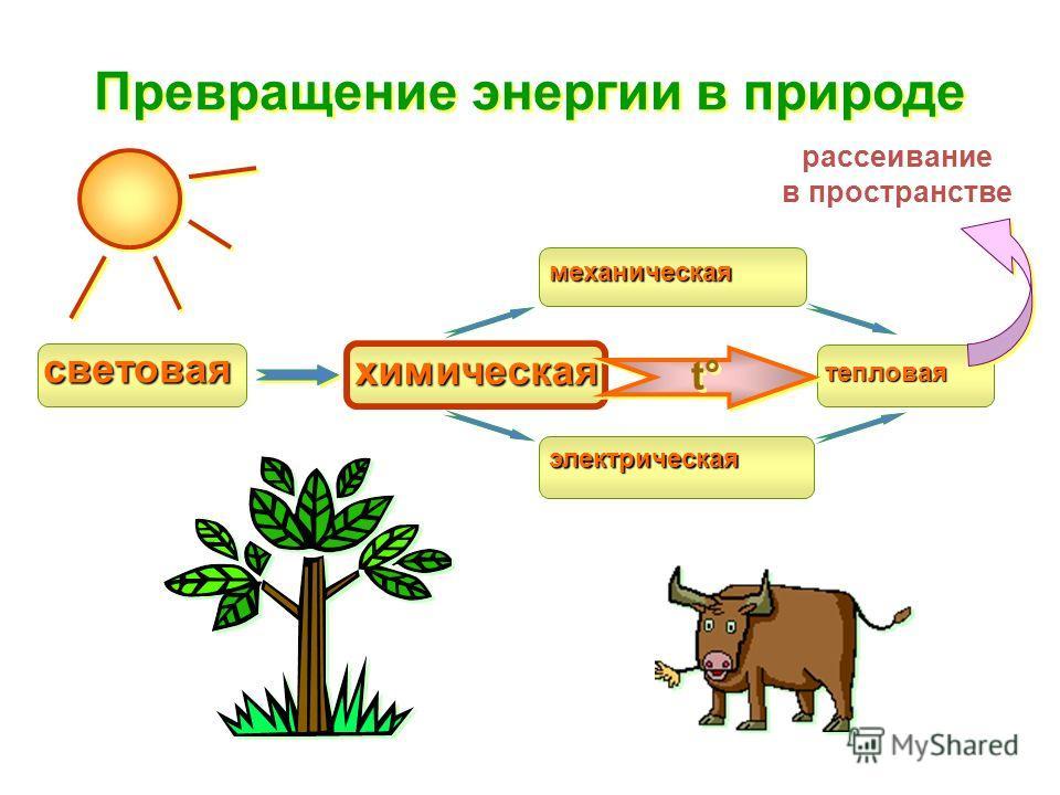 рассеивание в пространстве Превращение энергии в природе световая химическая механическая электрическая тепловая t°t° t°t°