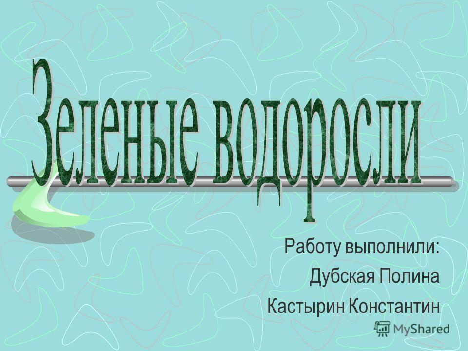 Работу выполнили: Дубская Полина Кастырин Константин