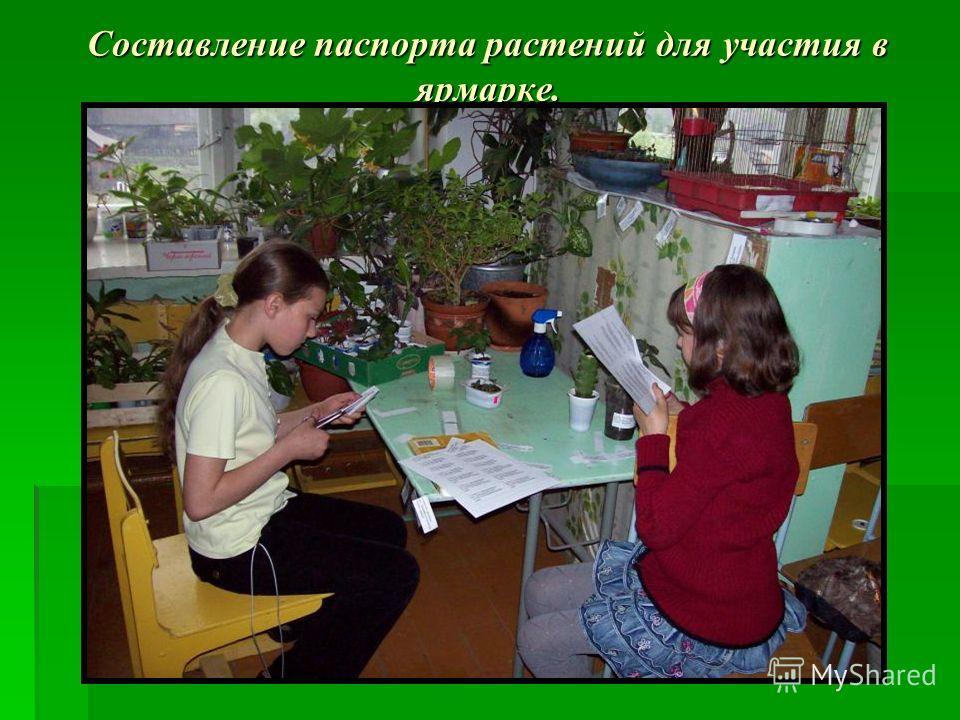 Составление паспорта растений для участия в ярмарке.