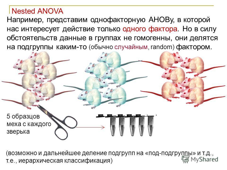 47 Nested ANOVA Например, представим однофакторную АНОВу, в которой нас интересует действие только одного фактора. Но в силу обстоятельств данные в группах не гомогенны, они делятся на подгруппы каким-то (обычно случайным, random) фактором. (возможно