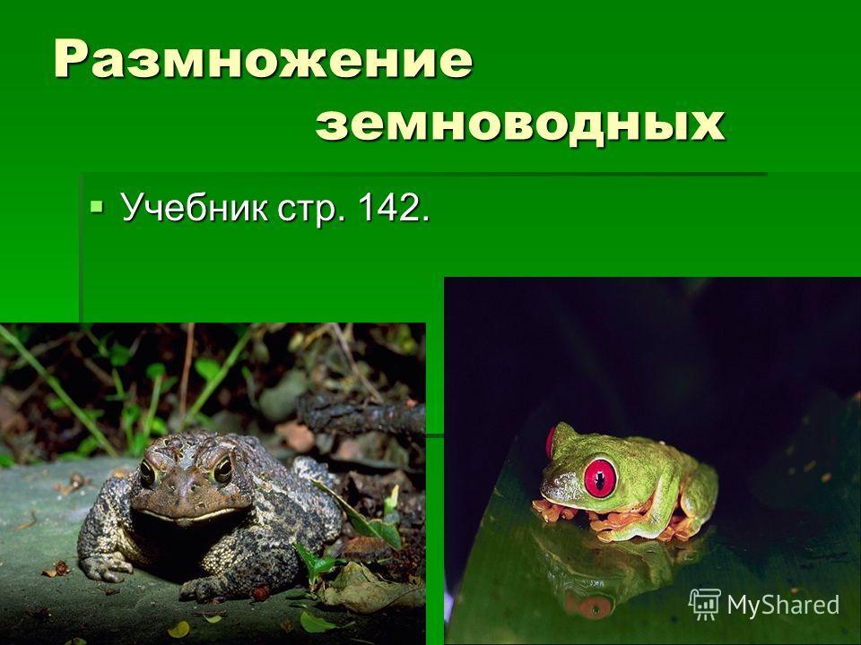Размножение земноводных Учебник стр. 142. Учебник стр. 142.