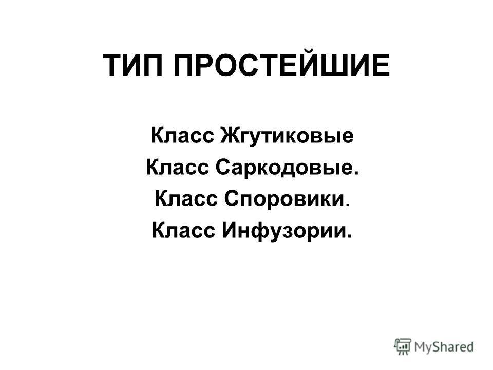 ТИП ПРОСТЕЙШИЕ Класс Жгутиковые Класс Саркодовые. Класс Споровики. Класс Инфузории.