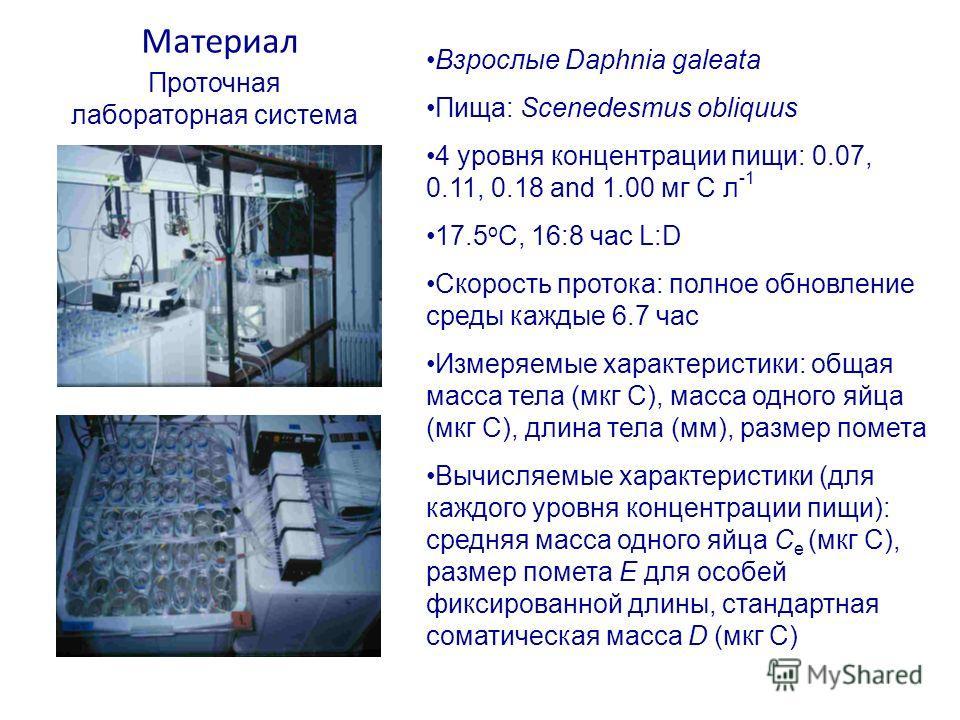Материал Взрослые Daphnia galeata Пища: Scenedesmus obliquus 4 уровня концентрации пищи: 0.07, 0.11, 0.18 and 1.00 мг C л -1 17.5 o C, 16:8 час L:D Скорость протока: полное обновление среды каждые 6.7 час Измеряемые характеристики: общая масса тела (