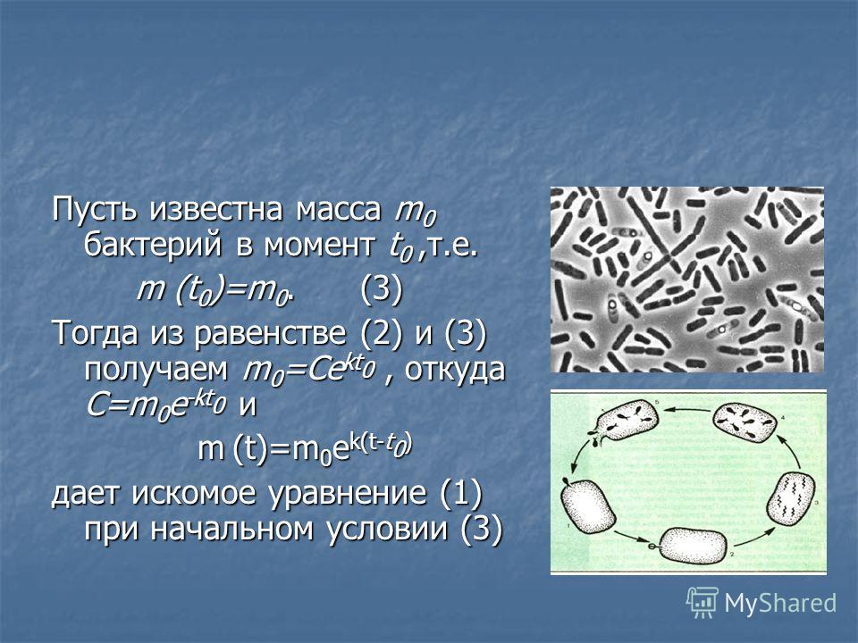 Пусть известна масса m 0 бактерий в момент t 0,т.е. m (t 0 )=m 0. (3) m (t 0 )=m 0. (3) Тогда из равенстве (2) и (3) получаем m 0 =Ce kt 0, откуда C=m 0 e -kt 0 и m (t)=m 0 e k(t-t 0 ) m (t)=m 0 e k(t-t 0 ) дает искомое уравнение (1) при начальном ус