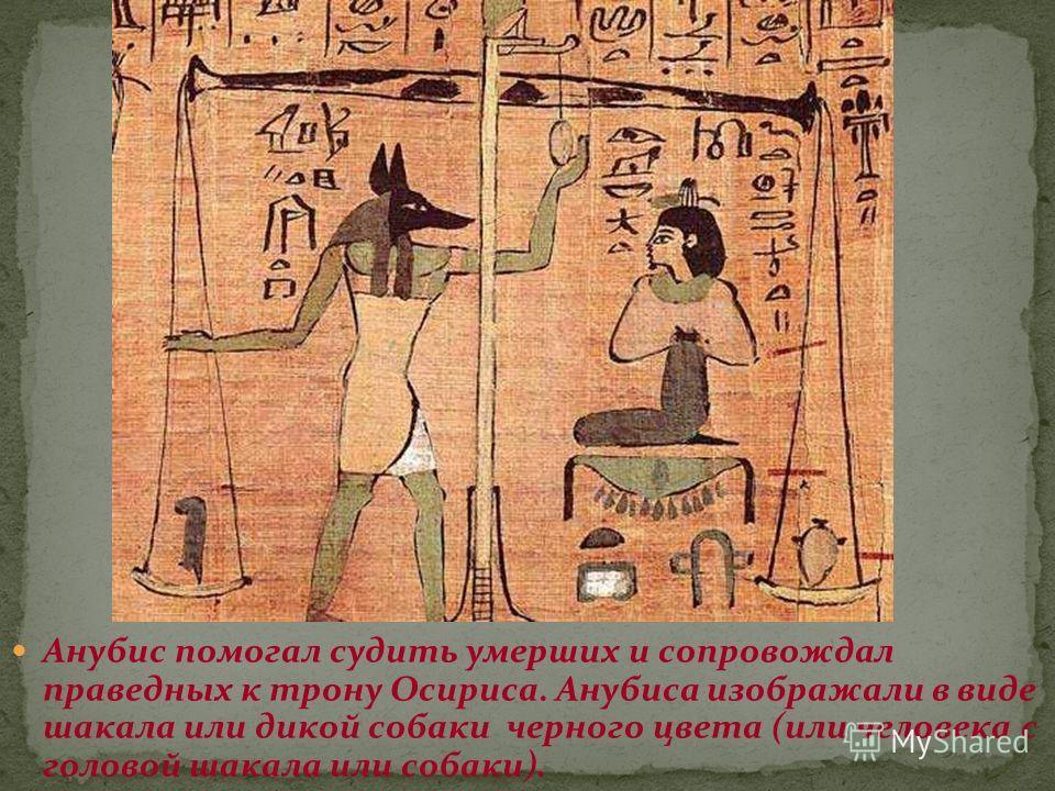 Анубис помогал судить умерших и сопровождал праведных к трону Осириса. Анубиса изображали в виде шакала или дикой собаки черного цвета (или человека с головой шакала или собаки).