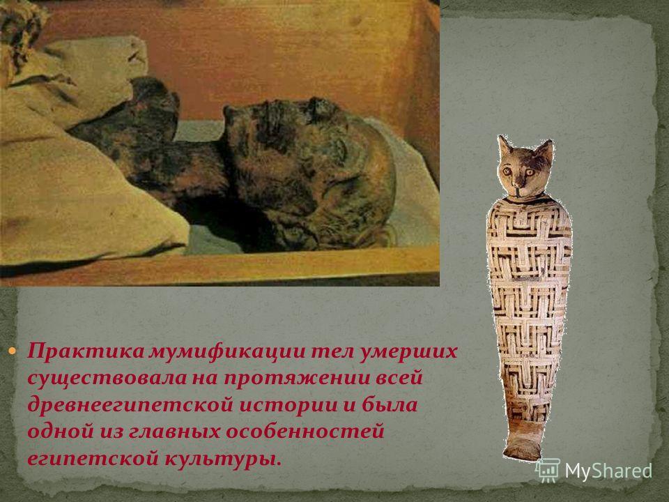 Практика мумификации тел умерших существовала на протяжении всей древнеегипетской истории и была одной из главных особенностей египетской культуры.