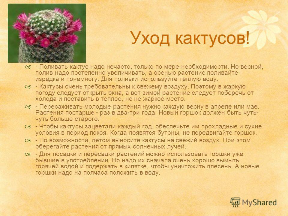 Уход кактусов! - Поливать кактус надо нечасто, только по мере необходимости. Но весной, полив надо постепенно увеличивать, а осенью растение поливайте изредка и понемногу. Для поливки используйте тёплую воду. - Кактусы очень требовательны к свежему в
