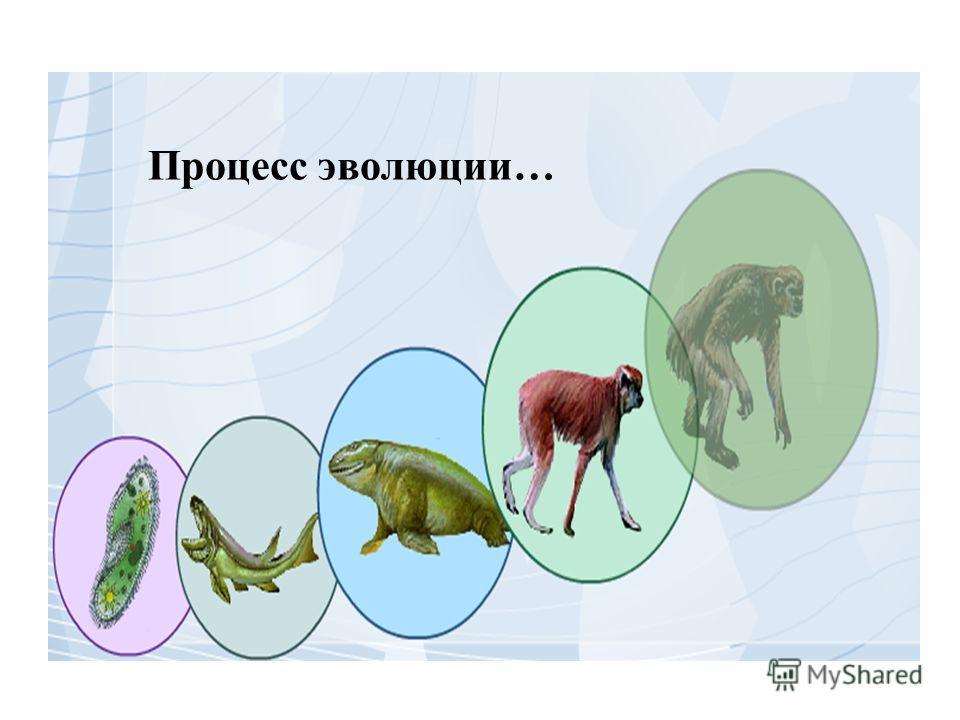 Процесс эволюции…