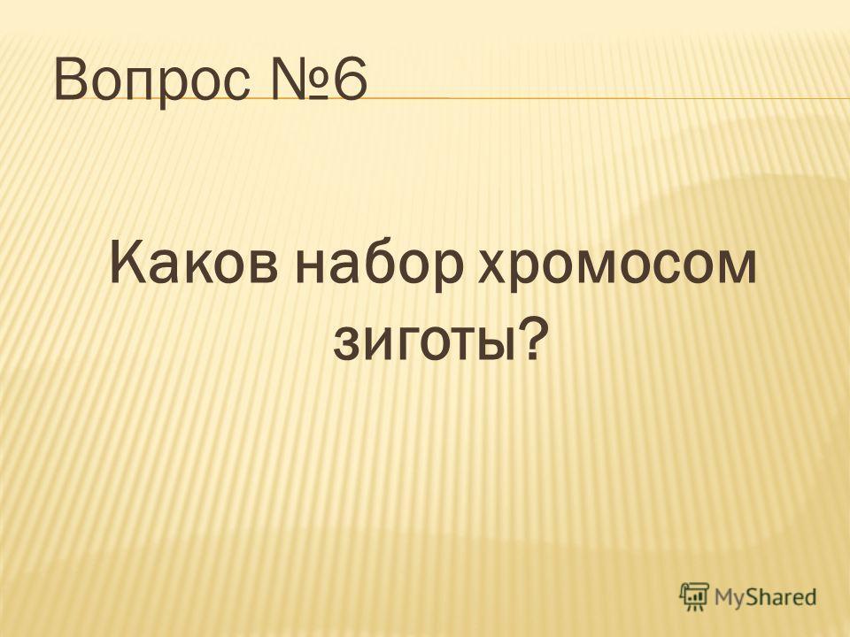 Вопрос 6 Каков набор хромосом зиготы?