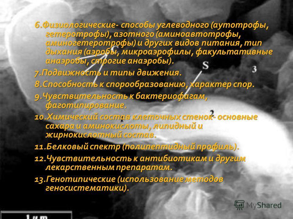 6.Физиологические- способы углеводного (аутотрофы, гетеротрофы), азотного (аминоавтотрофы, аминогетеротрофы) и других видов питания, тип дыхания (аэробы, микроаэрофилы, факультативные анаэробы, строгие анаэробы). 6.Физиологические- способы углеводног