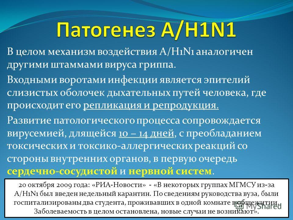 В целом механизм воздействия A/H1N1 аналогичен другими штаммами вируса гриппа. Входными воротами инфекции является эпителий слизистых оболочек дыхательных путей человека, где происходит его репликация и репродукция. Развитие патологического процесса