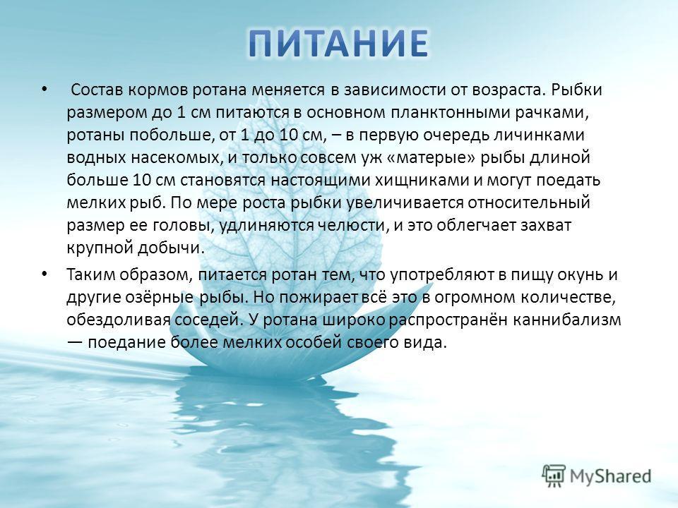Состав кормов ротана меняется в зависимости от возраста. Рыбки размером до 1 см питаются в основном планктонными рачками, ротаны побольше, от 1 до 10 см, – в первую очередь личинками водных насекомых, и только совсем уж «матерые» рыбы длиной больше 1
