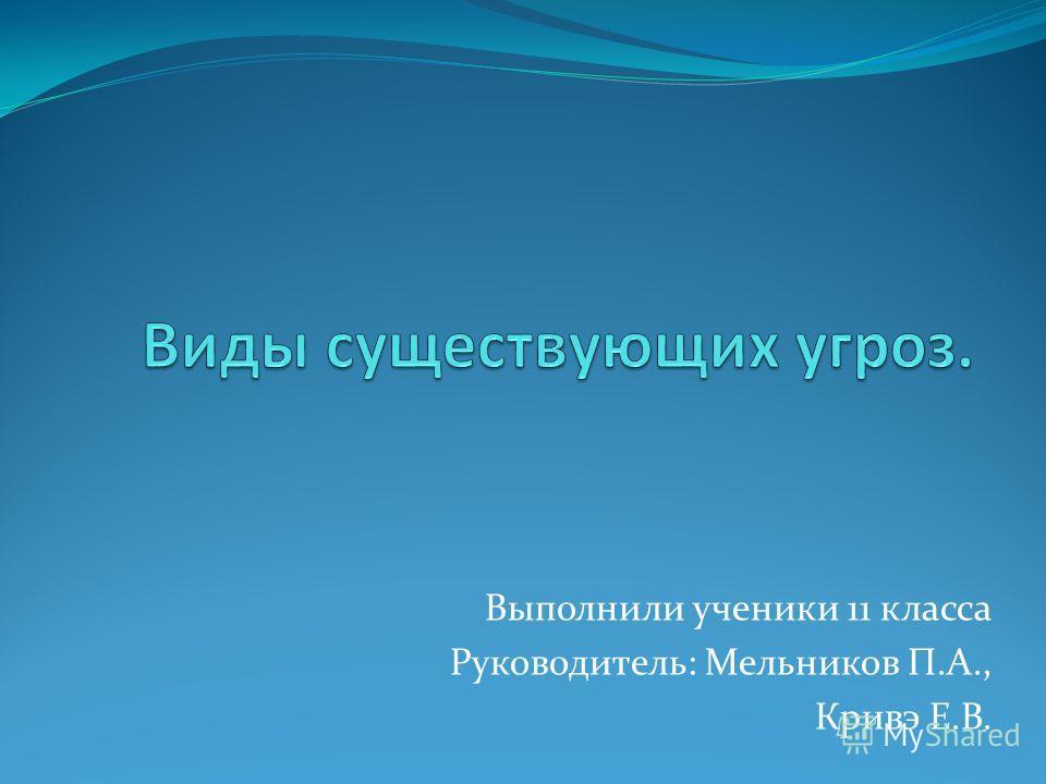 Выполнили ученики 11 класса Руководитель: Мельников П.А., Кривэ Е.В.