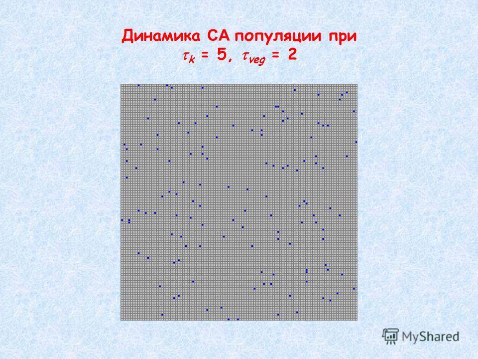 Динамика СA популяции при k = 5, veg = 2