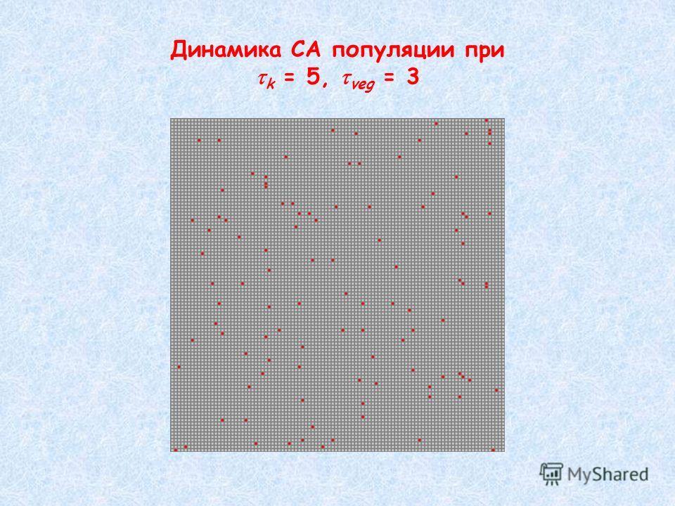Динамика CA популяции при k = 5, veg = 3