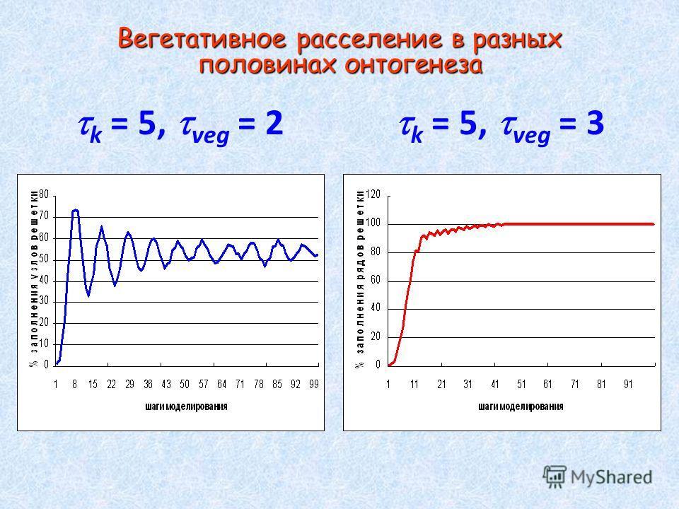 Вегетативное расселение в разных половинах онтогенеза Вегетативное расселение в разных половинах онтогенеза k = 5, veg = 2 k = 5, veg = 3