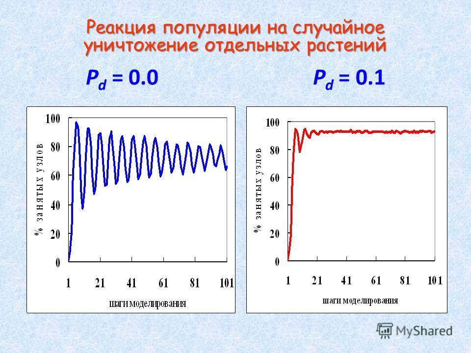 Реакция популяции на случайное уничтожение отдельных растений Реакция популяции на случайное уничтожение отдельных растений P d = 0.0 P d = 0.1