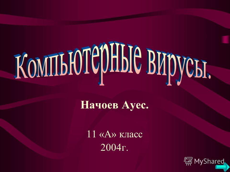 Начоев Ауес. 11 «А» класс 2004г.