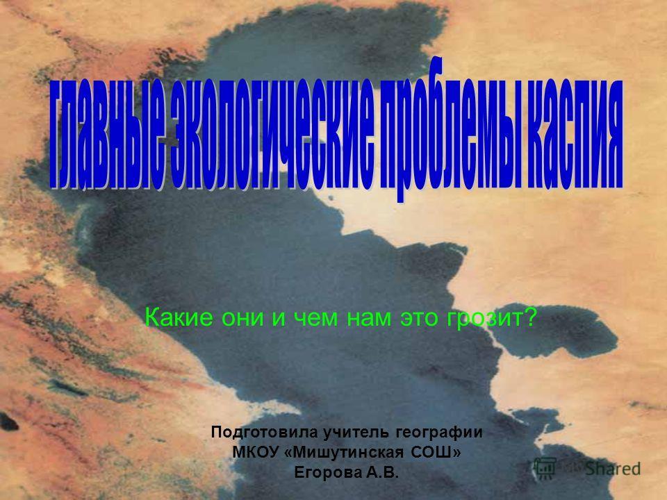 Какие они и чем нам это грозит? Подготовила учитель географии МКОУ «Мишутинская СОШ» Егорова А.В.