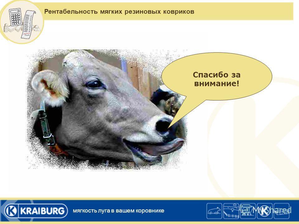 Выводы – контрольные вопросы для выявления потребности в мягких резиновых ковриках Каков процент хромых животных в вашем стаде? Какие разновидности заболеваний копыт у ваших коров? Ходят ли ваши коровы неуверенно и с опущенными головами? Каков процен