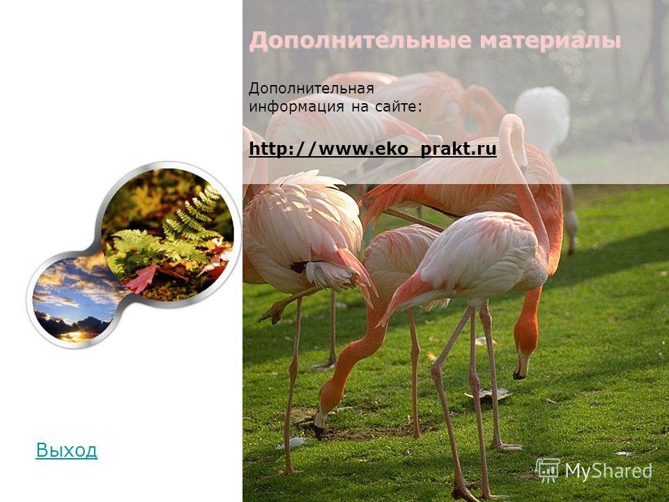Дополнительные материалы Дополнительные материалы Дополнительная информация на сайте: http://www.eko_prakt.ru Выход